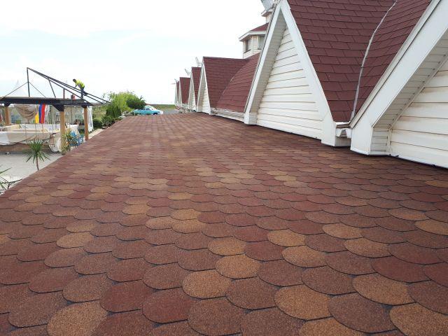 Bitumen Roof Shingle